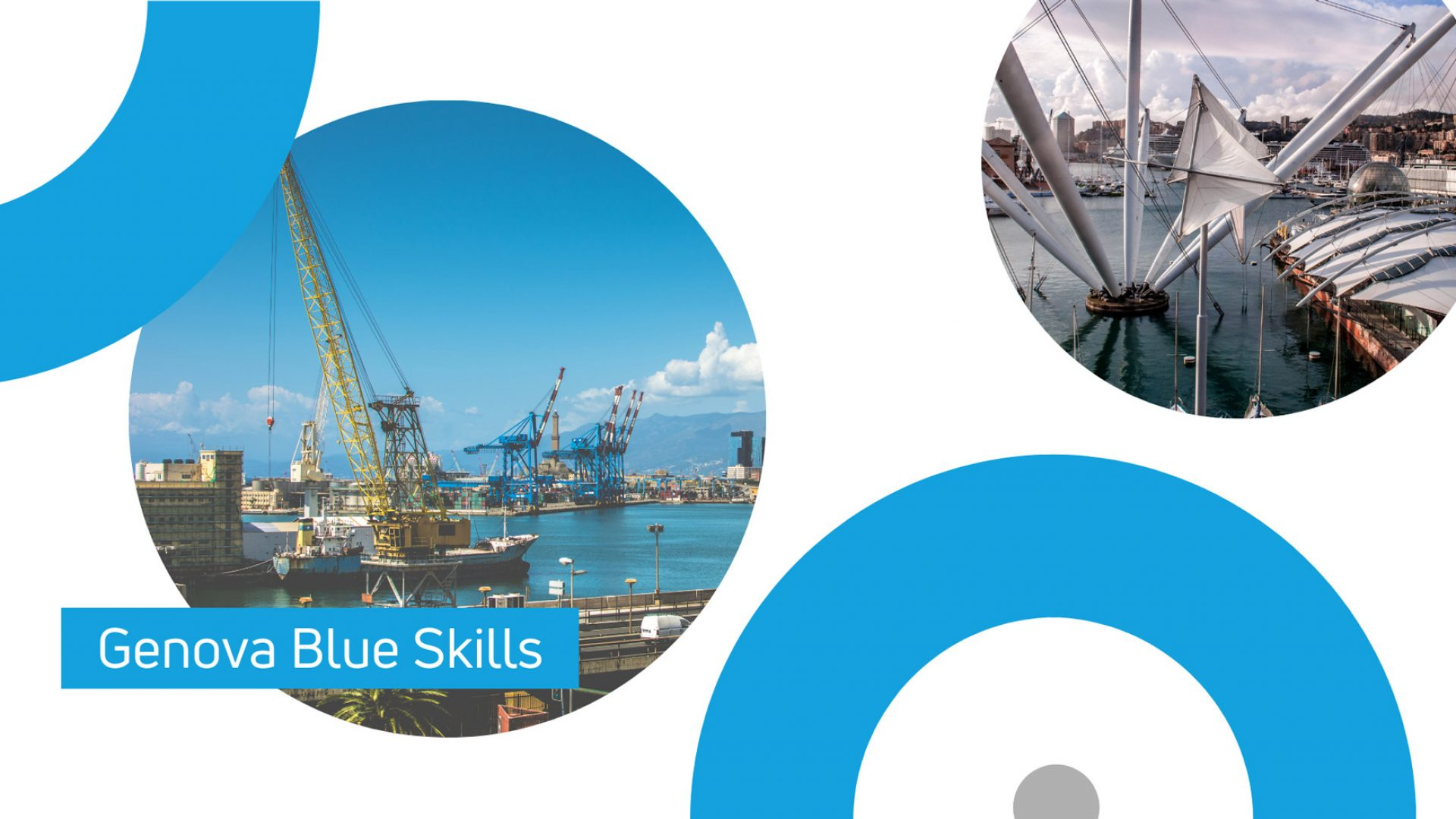Genova-Blue-Skills